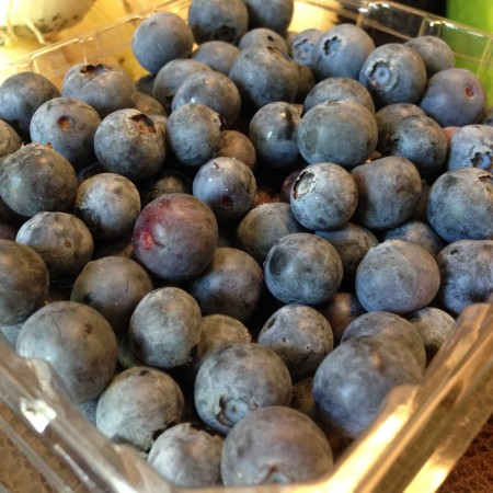 Berry Good Farms On The Go - Blueberries