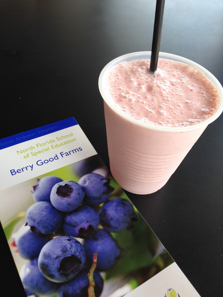 Berry Good Farms On The Go - Smoothie