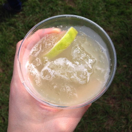 Down To Earth Farm - Homemade Ginger Beer