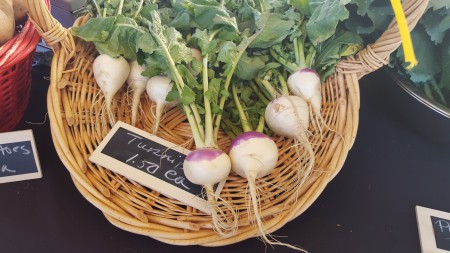 Abundant Harvests - Turnips