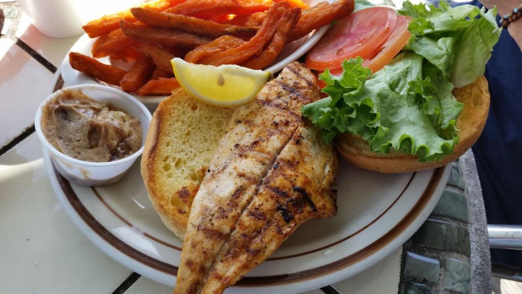Sandollar - Sandollar Sandwich